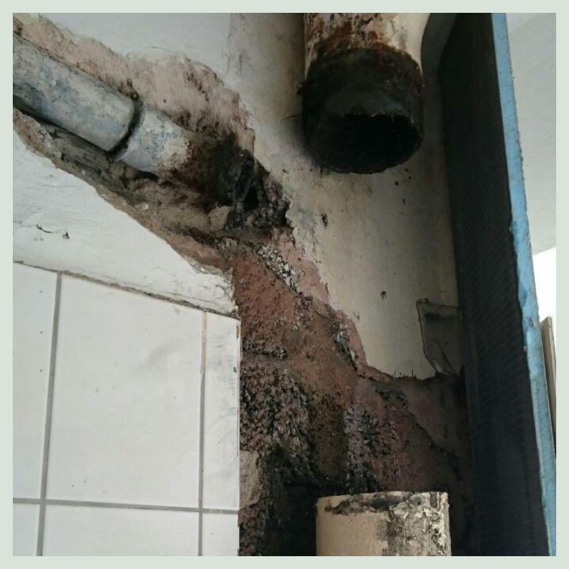 Wasserschadensanierung Bild1